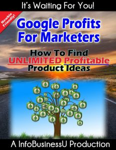 Google Profits for Marketers